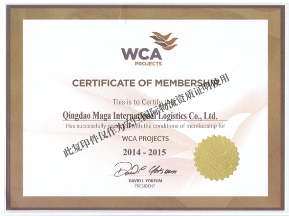 WCA----Project logistics Web member